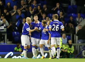 Capital One Cup - Second Round - Everton v Stevenage - Goodison Park