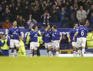 Football - Everton v Hull City - Barclays Premier League