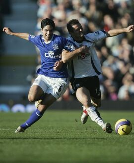previous seasons/season 06 07 fulham v everton/fulham v everton 4 11 06 tomasz radzinski fulham