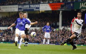 <b>Everton v Fulham</b><br>Selection of 10 items