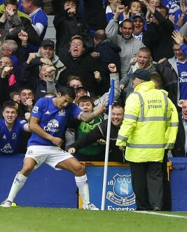 players staff/tim cahill/soccer barclays premier league everton v liverpool